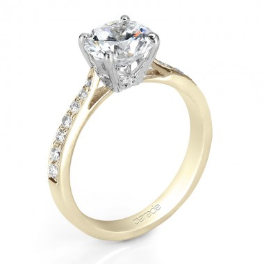 Moissanite Ring by Parade